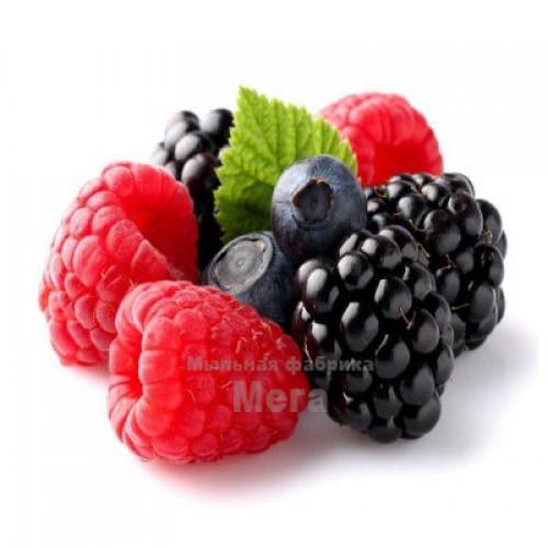Купить  Альгинатная маска Лесная ягода, 25 гр  в  Мыльная фабрика