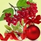 Купить  Отдушка Kringle Berry, 50 мл  в  Мыльная фабрика