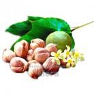 Купить  Баттер Кукуи натуральный, 25 грамм  в  Мыльная фабрика