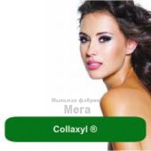 Купить  Collaxyl ®, 5 мл  в  Мыльная фабрика