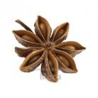 Купить  Аниса масляный экстракт, 5 мл  в  Мыльная фабрика