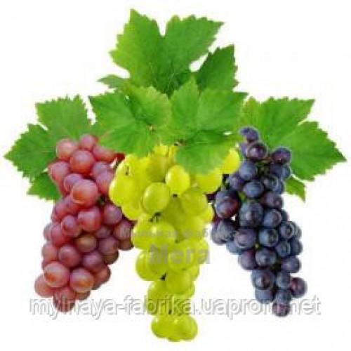 Купить  Ароматический экстракт Винограда, 5 мл  в  Мыльная фабрика