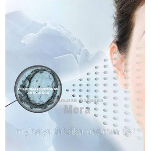 Купить  ANTARCTICINE® - Защищает кожу и удерживает влагу, 1 литр  в  Мыльная фабрика
