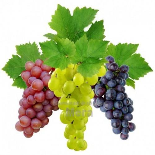 Купить  Ароматизатор для напитков Виноград Белый соковый, 1 литр  в  Мыльная фабрика