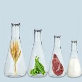 Гидролизаты протеинов оптом